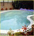 swimming pool photo by Viggo Mortensen, Juxtapos #19