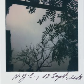 Polaroid by Viggo Mortensen - NYC Sept 2018