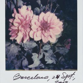 Polaroid by Viggo Mortensen - Barcelona Sept 2018