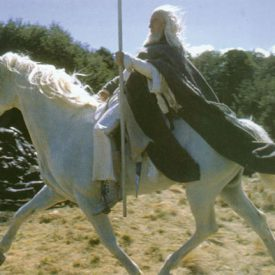 Gandalf's stunt double riding Shadowfax
