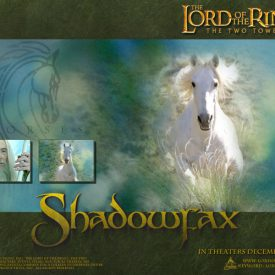 wallpaper for Shadowfax in The Lord of the Rings