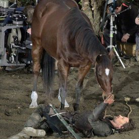 teaching Brego to lie down next to Aragorn (Viggo Mortensen)